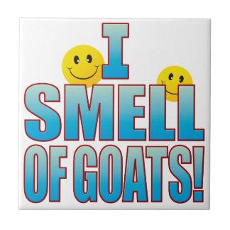 Smell Of Goats Life B Tile