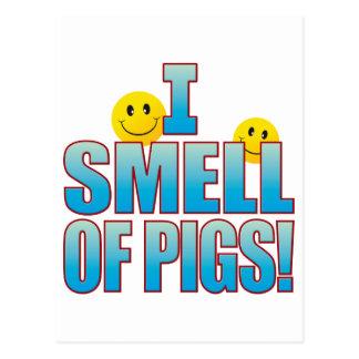 Smell Of Pigs Life B Postcard