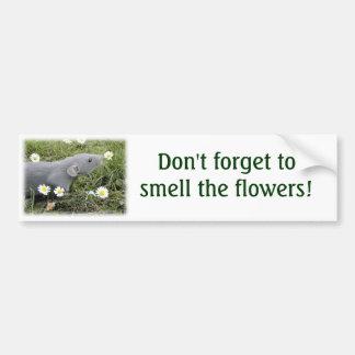 Smell the Flowers Bumper Sticker