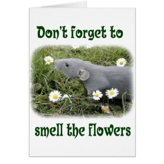 Smell the flowers greeting card