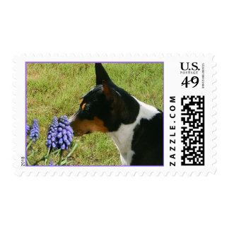 Smell The Flowers Postage