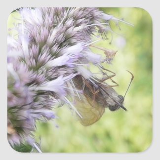 Smell The Flowers – Skipper Butterfly on Agastache Square Sticker