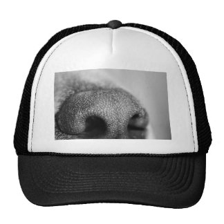 Smell You Mesh Hats
