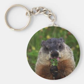 Smelling Spring Groundhog Basic Round Button Keychain