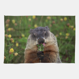 Smelling Spring Groundhog Towels