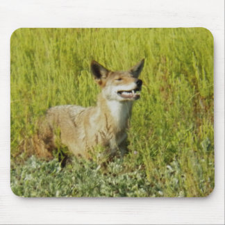 Smelling the Air by Leslie Peppers Mouse Pad
