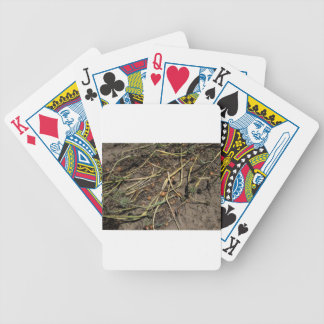 Smelly Onion Crop in the Field Bicycle Playing Cards