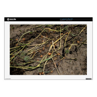 """Smelly Onion Crop in the Field Decal For 17"""" Laptop"""