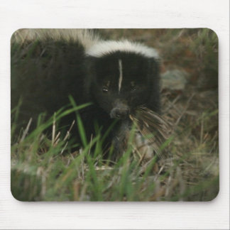 Smelly Skunk Mouse Pad
