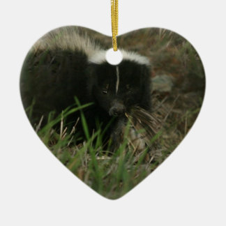Smelly Skunk Ornament