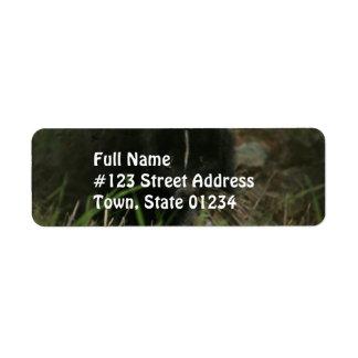 Smelly Skunk Return Address Label
