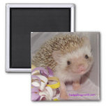 Smile! 2 Inch Square Magnet