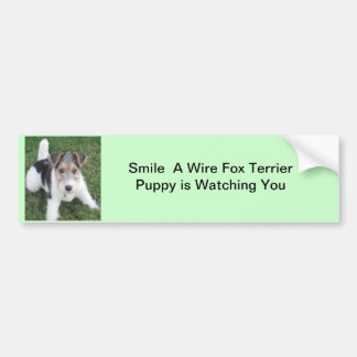 Smile A Wire Fox  Puppy is Watching You Bumper Sticker