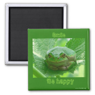 Smile, be happy  - green smiling frog magnet