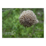 """Smile"" Blank Note Card"
