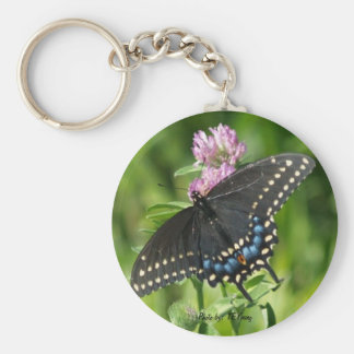 smile butterfly, Photo by: TEYoung Keychain