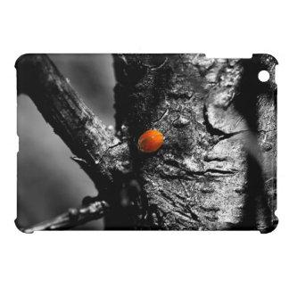 smile for a ladybug case for the iPad mini