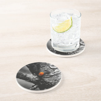 smile for a ladybug drink coaster