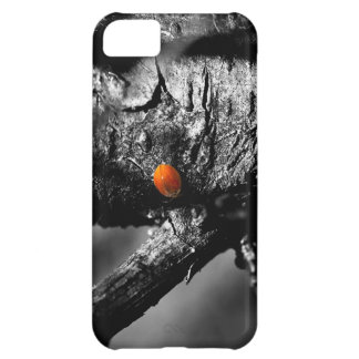 smile for a ladybug iPhone 5C case