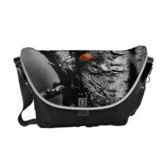 smile for a ladybug messenger bag