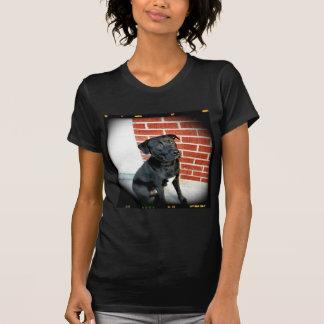 Smile For Us Midnight Filmstrip Border T-Shirt