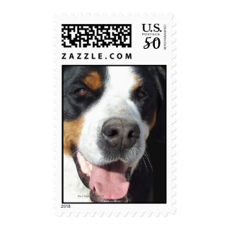 Smile! Greater Swiss Mountain Dog Postage
