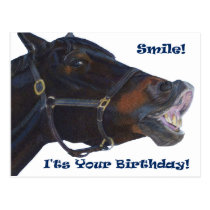 Smile!  It's Your Birthday! Horse Postcard