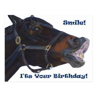 Smile!  It's Your Birthday! Horse Postcard