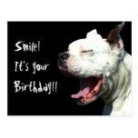 Smile it's your birthday White Boxer dog postcard