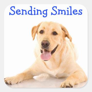 Smile Labrador Retriever Dog Sticker Labels