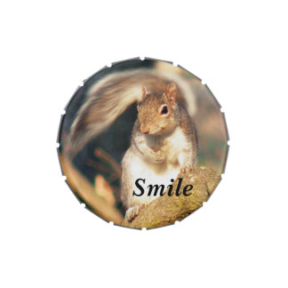 Smile Mr. Squirrel Candy Tin