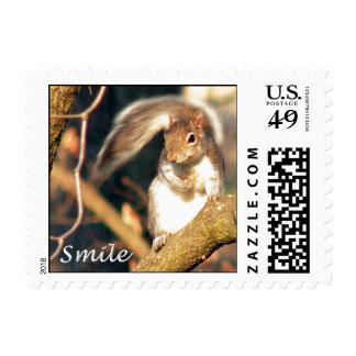 Smile Mr. Squirrel Postage Stamp