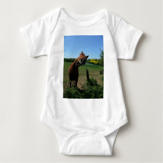 Smile of a horse front of a rape field shirt
