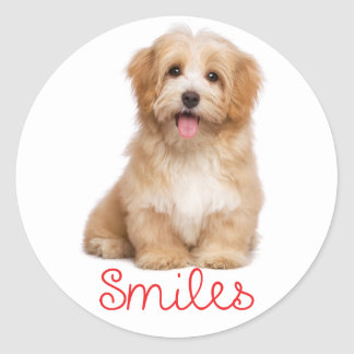 Smiles Havanese Tan Puppy Dog Hello Classic Round Sticker
