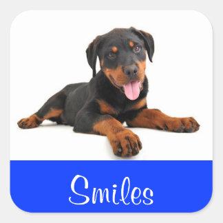 Smiles Rottweiler Puppy Dog Greeting Sticker