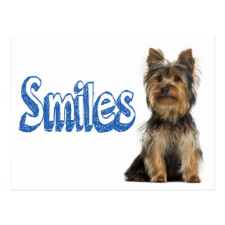 Smiles Yorkshire Terrier Puppy Dog Blank Post Card
