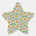 Smiley Daisy Flowers Pattern Star Sticker