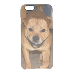 Uncommon iPhone 6 Clearly™ Deflector Case with Bull Terrier Phone Cases design