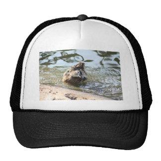 Smiley Duck Trucker Hat