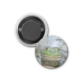 Smiley Frog 1 Inch Round Magnet