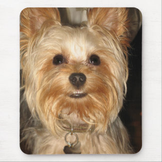 smiley yorkie mouse pad