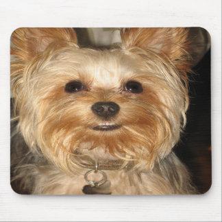 smiley yorkie mousepad