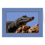 Smiling Alligator, Birthday Card, Humor Card