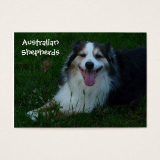 Smiling Australian Shepherd  Business Card