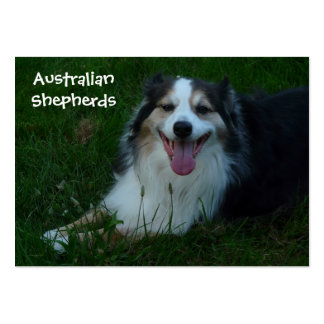Smiling Australian Shepherd  Business Card