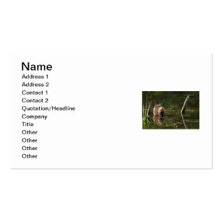 Smiling Beaver Double-Sided Standard Business Cards (Pack Of 100)