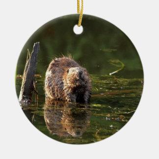 Smiling Beaver Christmas Ornaments