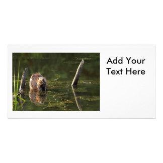 Smiling Beaver Custom Photo Card