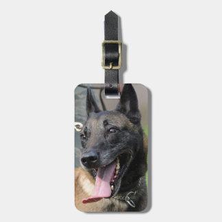 Smiling Belgian Malinois Dog Bag Tag