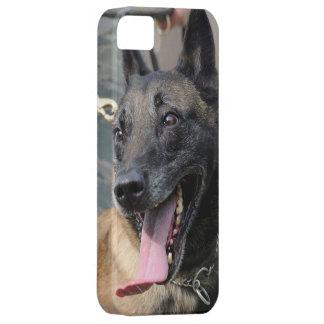 Smiling Belgian Malinois Dog iPhone SE/5/5s Case